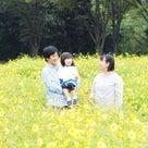 ◉感謝◉コスモス撮影会@昭和記念公園の記事より