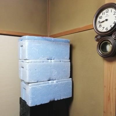 ビオ再開・りるりる裏口開通・乳がんの兆候のかゆみあり・役所まわり・ナミちゃん降臨の記事に添付されている画像
