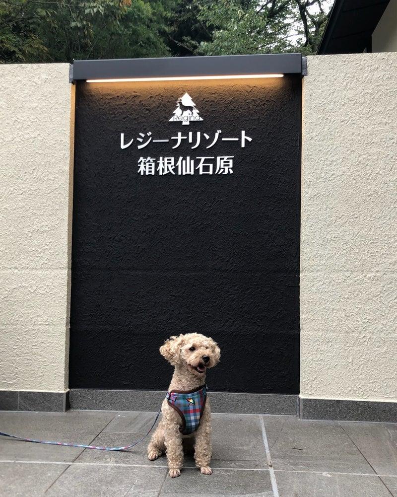 箱根仙石原レジーナリゾート