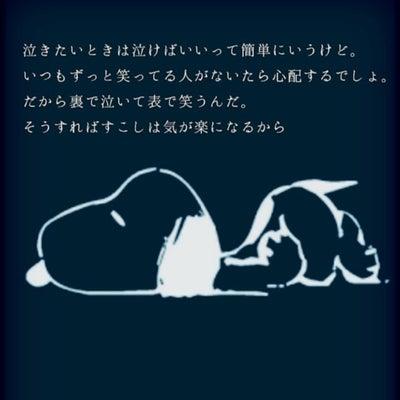 『絆』は『命綱』にの記事に添付されている画像