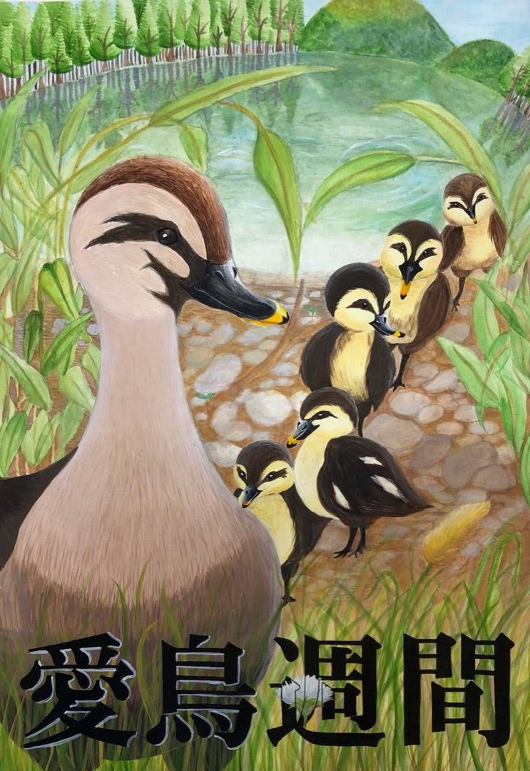 愛鳥 週間 ポスター