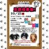 10/21(日)譲渡会&チャリティー物販イベント開催いたしますの画像