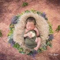 【撮影メニュー】 ニューボーンフォト(新生児写真)Newborn Photogrの記事に添付されている画像
