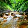 栃木の胸きゅん沢♪赤川の滝群vol. 4の画像