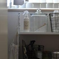 ペットや赤ちゃんも安心!これ1本で家中丸ごと除菌&消臭の記事に添付されている画像