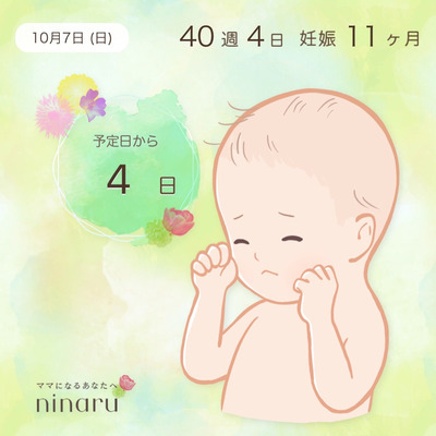 40w4d 愛犬トリミング☆の記事に添付されている画像