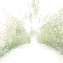 お散歩日和?の記事に添付されている画像