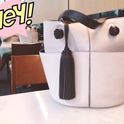 ブランドバッグをレンタルしてみたの記事に添付されている画像