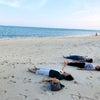 沖縄ヨガ旅の画像