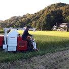 稲刈り開始です!の記事より