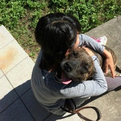 ❤️愛犬も!人も!愛知でRebornセッション❤️の記事に添付されている画像