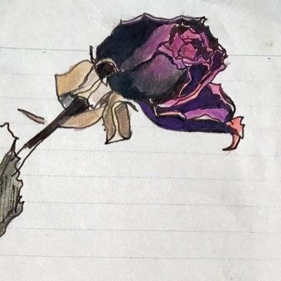 赤い薔薇の記事に添付されている画像