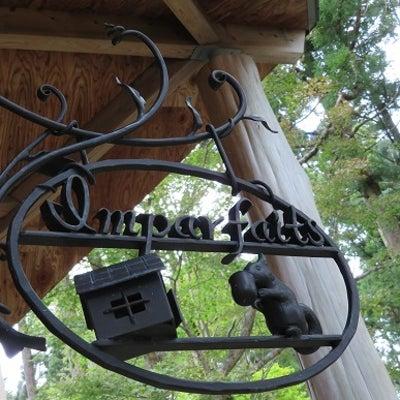 箱根の森のやさしい時間 ~アンパルフェ箱根~の記事に添付されている画像