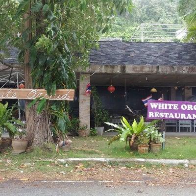 2018年タイ旅行④White Orchidで遅めのランチの記事に添付されている画像