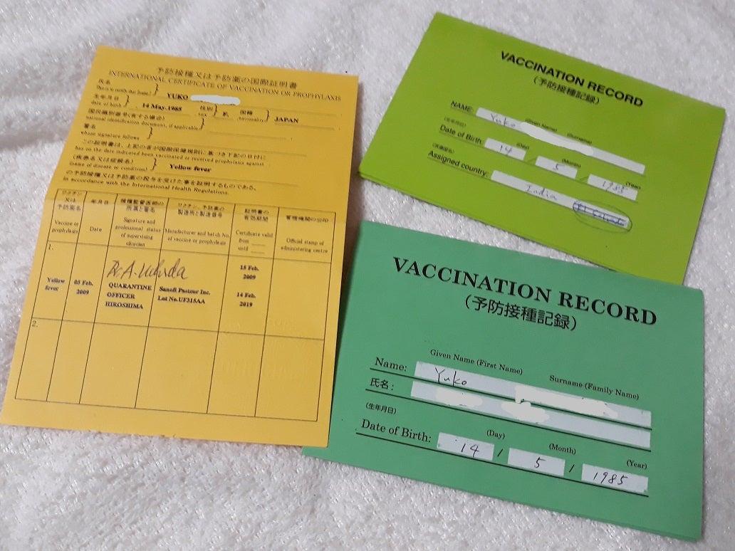 インフルエンザ予防接種は効かないので ...