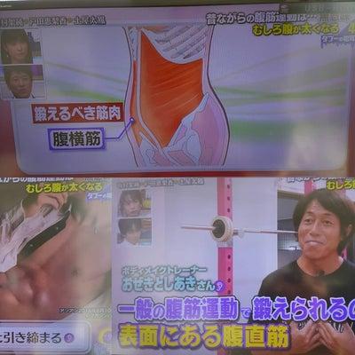 林先生の初耳学(TBSテレビ)で、腹筋トレーニングについてコメントの記事に添付されている画像