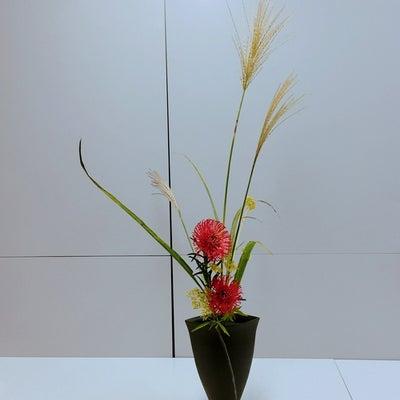 ススキのお手入れ~ピンクッションの自由花【いけばな池坊】の記事に添付されている画像
