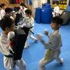 極真  東品川道場  少年少女  空手  武道 子供の習い事の画像