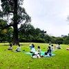 パークヨガ&ピクニックを楽しんできましたの画像