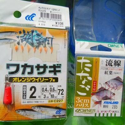 タナゴ&チカ釣行の記事に添付されている画像