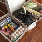 【食材まとめ買い(10月第3週目)&今週の献立予定】