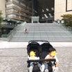 安藤忠雄さん監修の空間で遊ぶ双子boys
