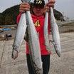 10月16日(火)  サゴシ‼️サワラ‼️良く釣れた❗