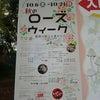 秋バラさんぽ~長居植物園の画像