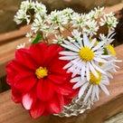 葬儀ナレーション実例「生け花」の記事より