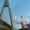上弦の月と名古屋テレビ塔、それからセントラルブリッジの画像