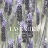 Lavender(ラベンダー)の画像