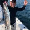 10月17日 太刀魚‼️ハヤブサ & ポイント