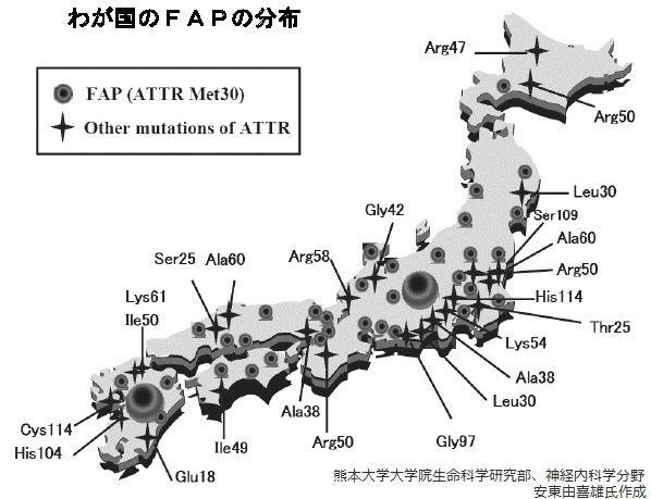 日本国内の遺伝性トランスサイレチン型アミロイドーシス患者の集積地分布図