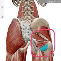 ターンアウトのために♡ 股関節を外旋させる①の記事に添付されている画像