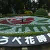 神戸ウォーキングの画像