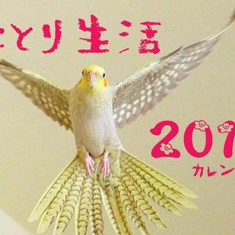 『ことり生活カレンダー2019』販売開始します!