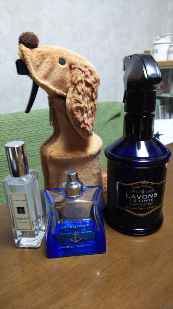 平野 紫 耀 ブログ ポッピング シャワー