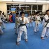 極真会館 東品川道場  少年少女空手 武道の画像