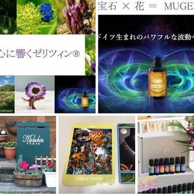 11月24日イベント♡出店者様紹介♡68店舗めの記事に添付されている画像