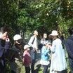 アケビ食べ放題 木の実講習会