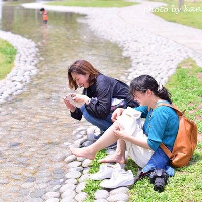 【3月 満席】撮ることを楽しむ オトナの遠足♪『フォト散歩』の記事に添付されている画像