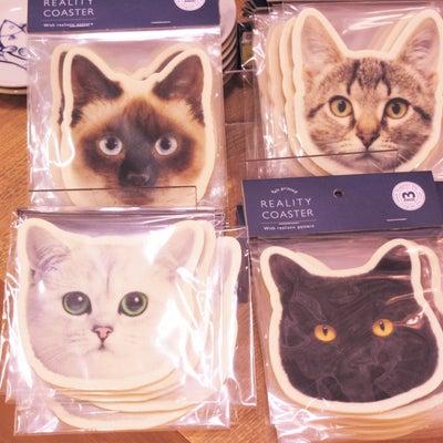 大好きな愛猫シャム猫 ♡ トム♡♡♡の記事に添付されている画像