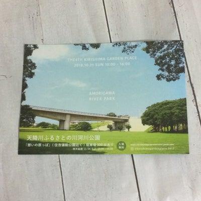 今日は霧島ガーデンプレイスへの記事に添付されている画像