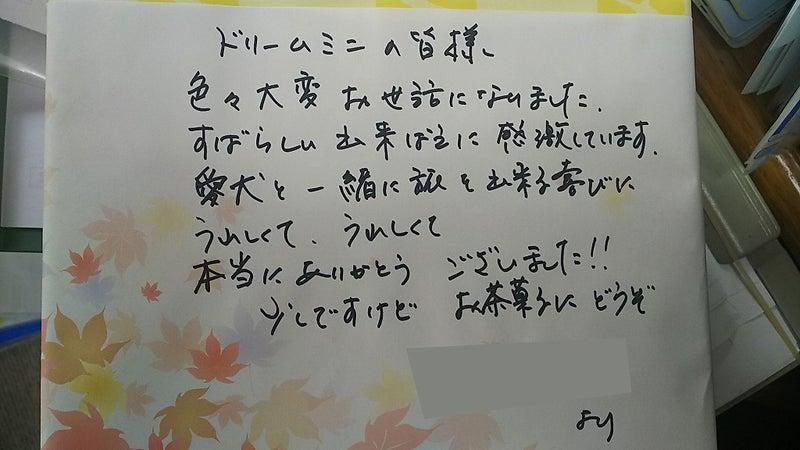 軽キャンパー ドリームミニ オーナー様からのお手紙