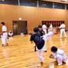 八尾   空手   道場稽古③の画像