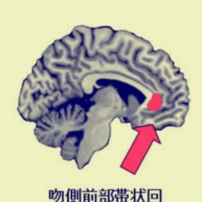 幸せ脳の作り方の記事に添付されている画像