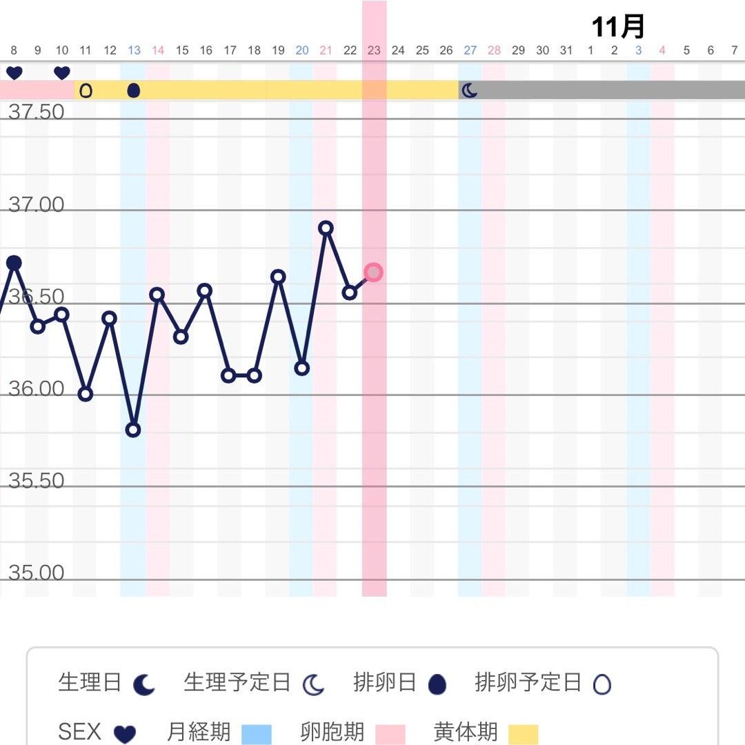 高温期10 【妊活初心者】期待の高温期10日目~リセットまでの変化&症状まとめ|Life Design
