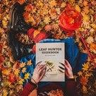 ✳︎秋は抜け毛の季節✳︎の記事より