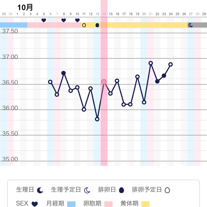 高温期11日目 体温下がる 陽性