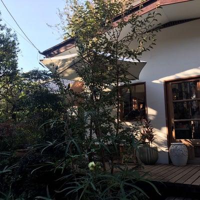 藤香る、われ想う vol,201 ~秋晴れの日に、われ想う~の記事に添付されている画像